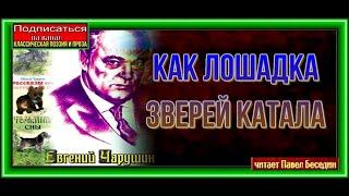 Как лодадка зверей катала Евгений Чарушин  читает Павел Беседин