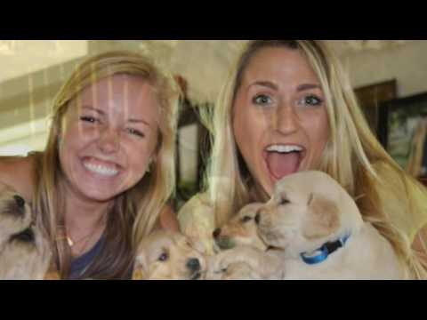Mitchell and Dallas' Love Story - Rehearsal Dinner Video