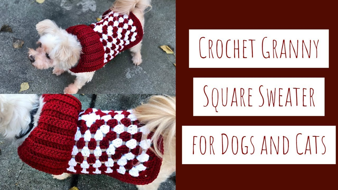 How To Crochet A Granny Square Sweater For Dogs And Cats Youtube