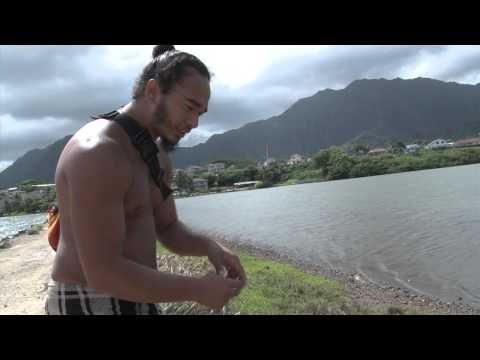 Ancient Hawaiian Fishpond in Heeia, Hawaii