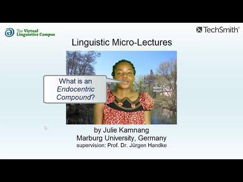 Endocentric Compounds ☆ Linguistics Lecture