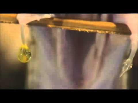 Die Wirkung von SYNAPSENGIFTEN EINFACH erklärt!из YouTube · Длительность: 9 мин3 с