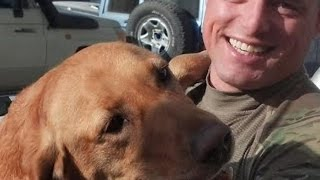 K9 Rescue Mission - 'these Dogs Are Soldiers Too'
