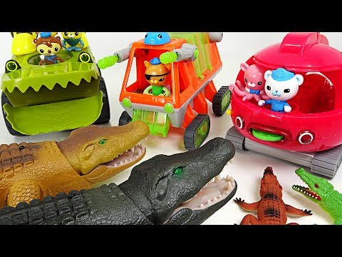 Thumbnail: Terrible Crocodile flock appeared!! Go! Octonauts's all exploration vehicle!! - DuDuPopTOY
