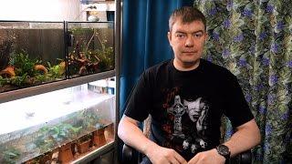 видео Перевозка аквариума – как перевезти аквариум с рыбками