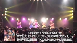 2011.11.25発売!!THE ポッシボー「幸せ花火ゴッゴッGOーッ!」