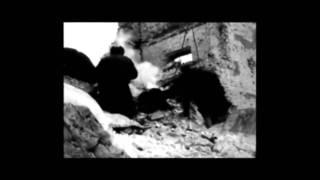 Военная кинохроника СССР в 1941 - 1945 гг.