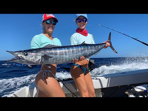 Wahoo HIGH SPEED Trolling In The BAHAMAS