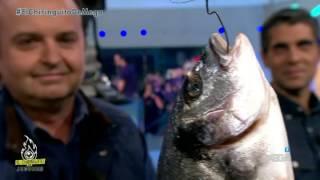 Cristobal Soria 'pesca' El Tiburón Blanco