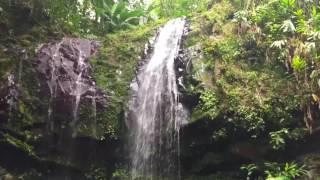 Cascada Las Delicias Ciales Puerto Rico
