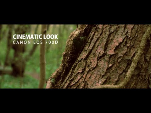 Achieve a Stunning Professional Film Cinematic (Cheaply and
