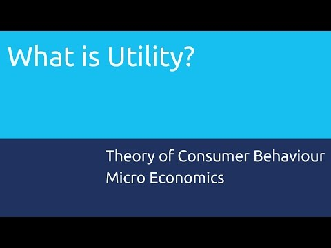 What is Utility | Theory of Consumer Behaviour | CA CPT | CS & CMA Foundation | Class 11