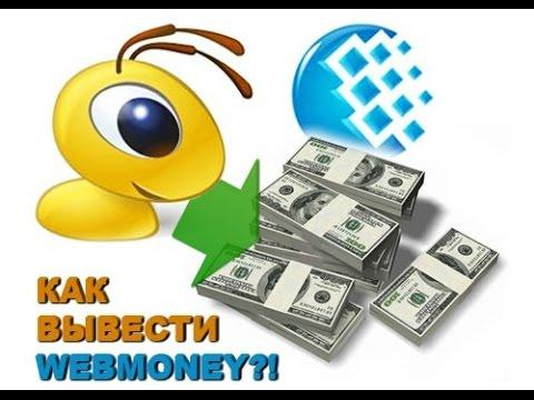 Как выводить Вебмани и принимать чеки через Ecoin? Обзор, отзыв