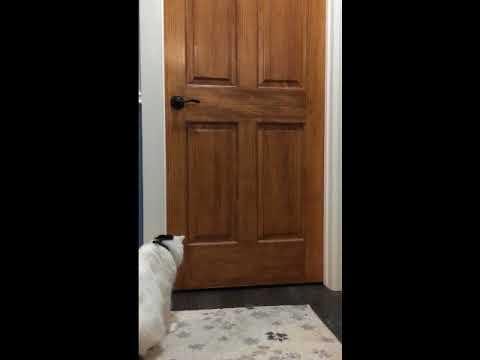 Ion Opens a Door