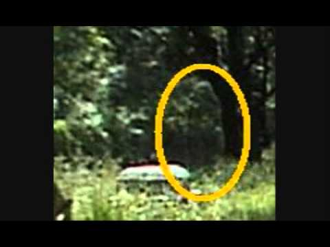 Ghost Woman of Bachelors Grove Cemetery