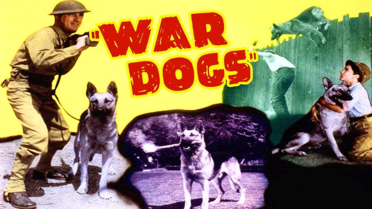 Download War Dogs (1942) Action, Adventure, Drama Full Length Movie