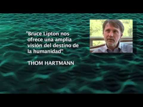 Conferencia de Bruce Lipton 'La Biología De La Creencia' - RESUMEN en ESPAÑOL