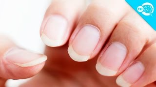How Long Can Fingernails Grow?