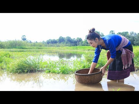 Cooking snail recipe in my village