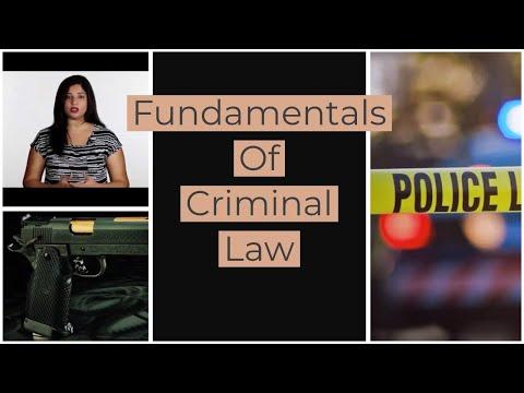4 - Fundamantal Principles of Criminal Law