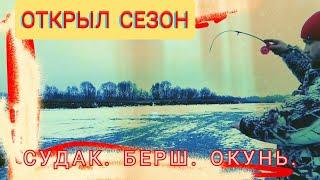 Рыбалка со льда Открыл сезон Поймали судака берша и окуня Деревня Сареево г Ядрин Чувашия