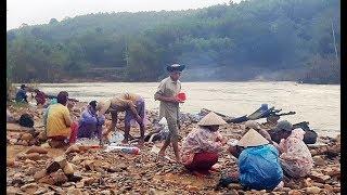 Người Quảng Nam liều mình đãi vàng dưới sông sau lũ dữ
