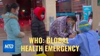 China Pressured Who Not To Declare Coronavirus A Global Health Emergency I Ntdtv