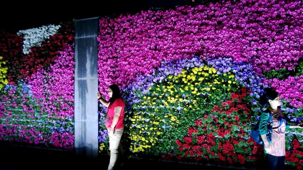 Flower Wall The Bund Shanghai Flower Wall Youtube