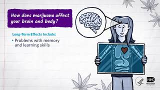 Mind Matters: How Does Marijuana Affect Your Brain and Body?