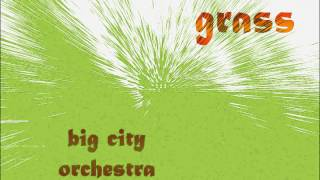 Big City Orchestra - Grass & Grass