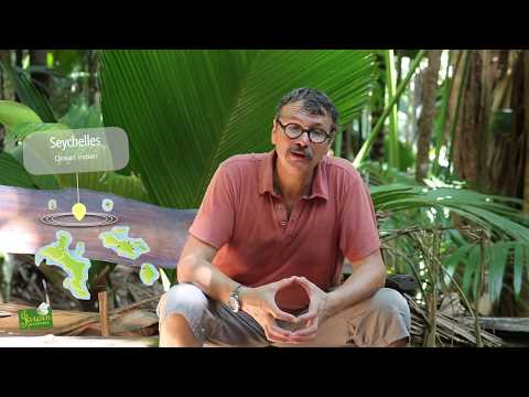 Nouveau film Jardin-Jardinier ... aux Seychelles !
