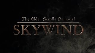 The Elder Scrolls Skywind - Мнение