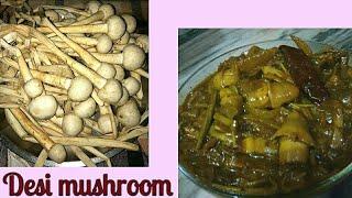 🍄 इस सब्जी के स्वाद का कोई मुकाबला नही  |Natural Mushroom curry|Special Mushroom masala |देसी मशरूम