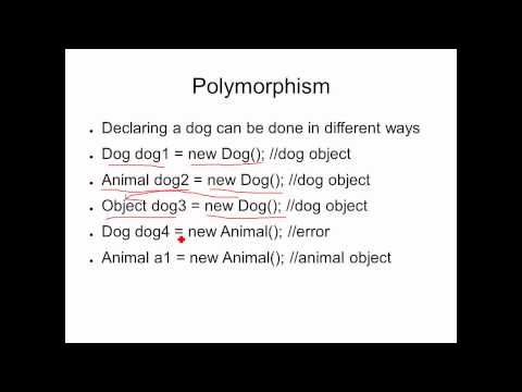 Inheritance Polymorphism, and Subclasses in Java - AP Computer Science Lesson 9
