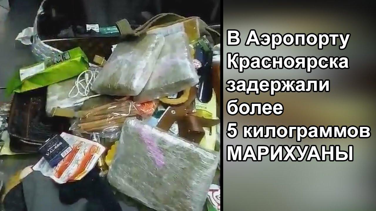 купить холодильник в екатеринбурге - YouTube