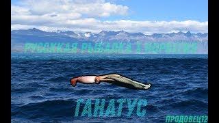 Російська рибалка 3: Норвегія - Ловля Ганатуса