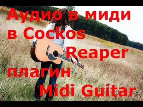 Аудио в миди в Cockos Reaper плагин Midi Guitar
