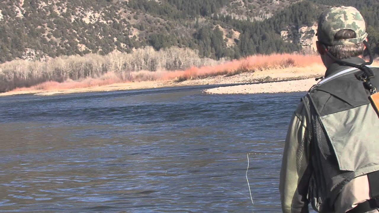 Dry fly fishing south fork snake river youtube for South fork snake river fishing report