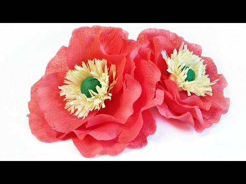 Crepe Paper flowers Icelandic Poppies tutorial easy making for kids Tissue paper poppy flower