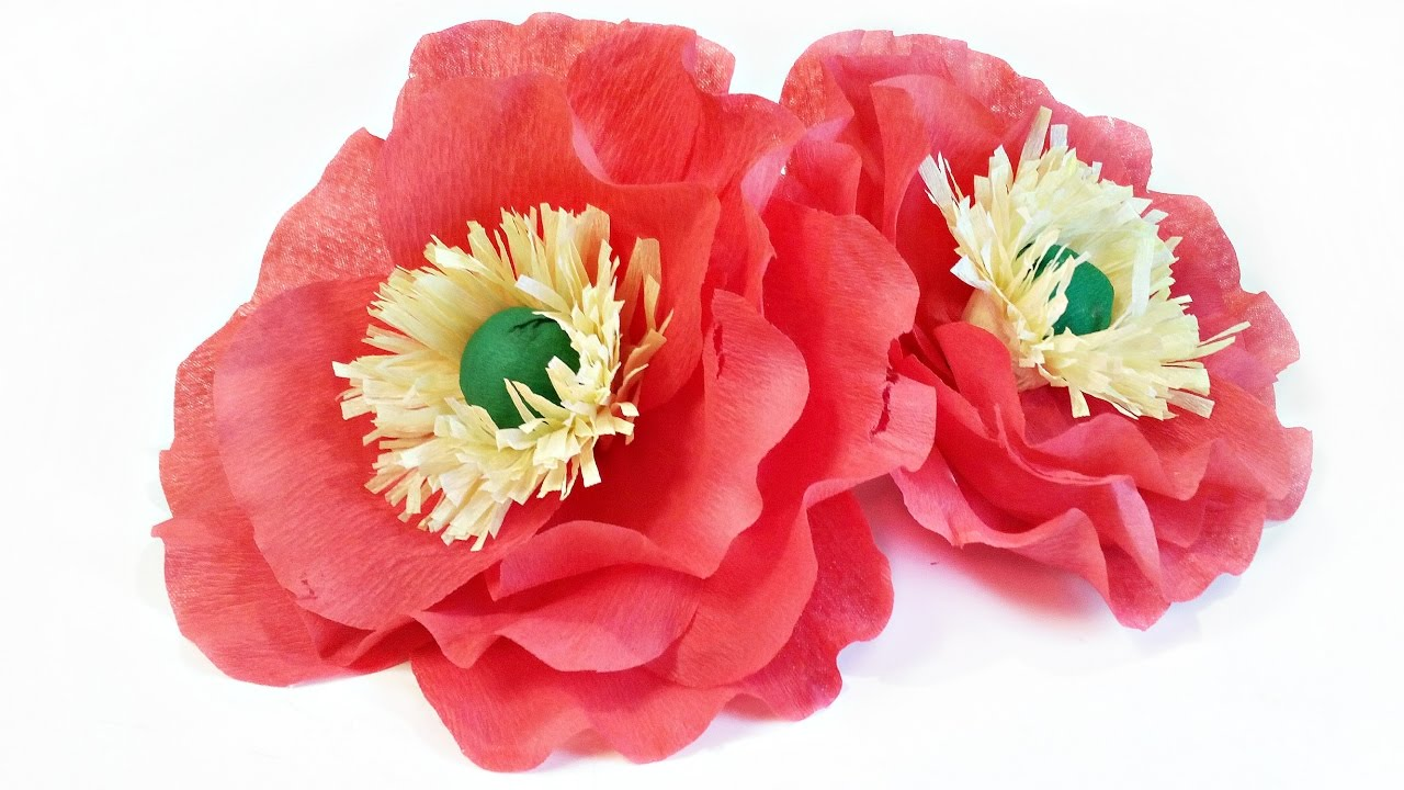 Crepe Paper Flowers Icelandic Poppies Tutorial Easy Making For Kids