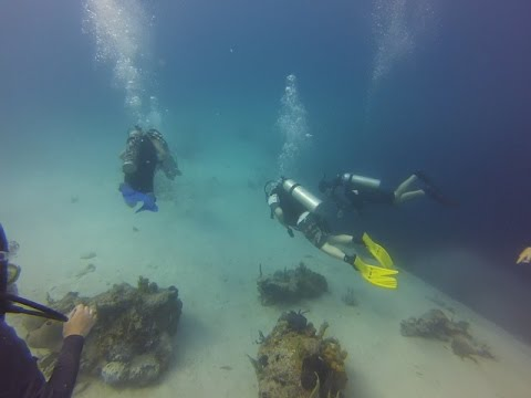 Scuba diving at the Lost Blue Hole in the Bahamas - June 2015