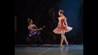 My First Ballet: Sleeping Beauty – Trailer | English National Ballet