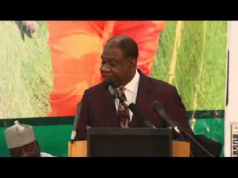 Ministerial Platform 2013: Presentation by the Minister of Power, Prof. Chinedu Nebo