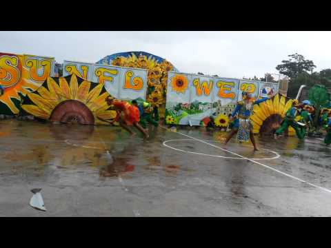 THE SUNFLOWER FESTIVAL OF LIGAO CITY IN GAYON BICOL 2K15