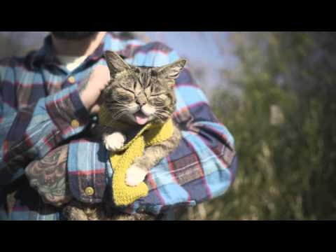 There WAS only one BUB... and then POOF!