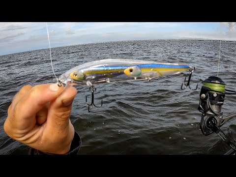 Fishing GLASS MINNOW Jerkbaits + Jigs Off The Beach (Jumbos!)
