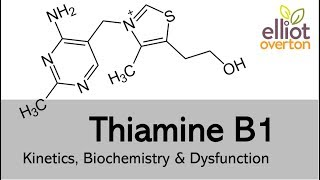 Thiamine (Vitamin B1): Basic Kinetics, Biochemistry & Deficiency