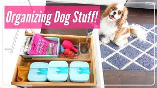 🐶How I Organize My Dog's Stuff | Organizing Inspiration 🎾