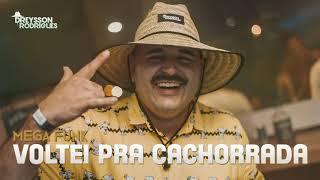 Baixar MEGA FUNK VOLTEI PRA CACHORRADA DREYSSON RODRIGUES