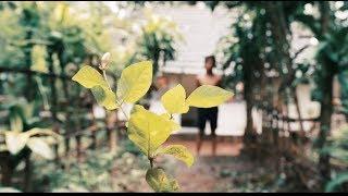 Job Kurian - Mulla (Hope project)